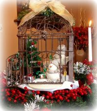 117 best images about Bird Cage Ideas Decor on Pinterest