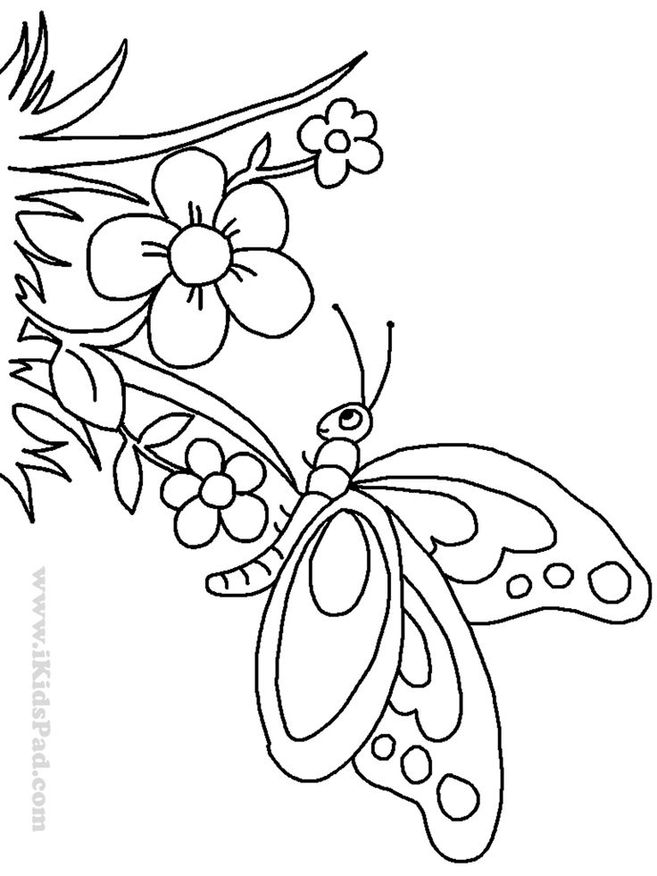 Vintage Mexican Embroidery Patterns