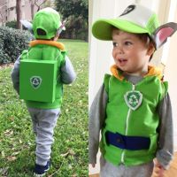 25+ best ideas about Paw patrol costume on Pinterest | Paw ...