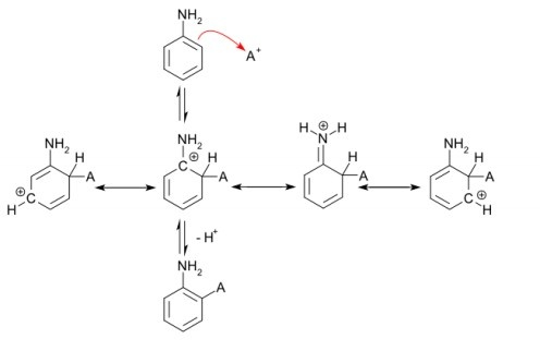 81 best images about Organic Chemistry on Pinterest