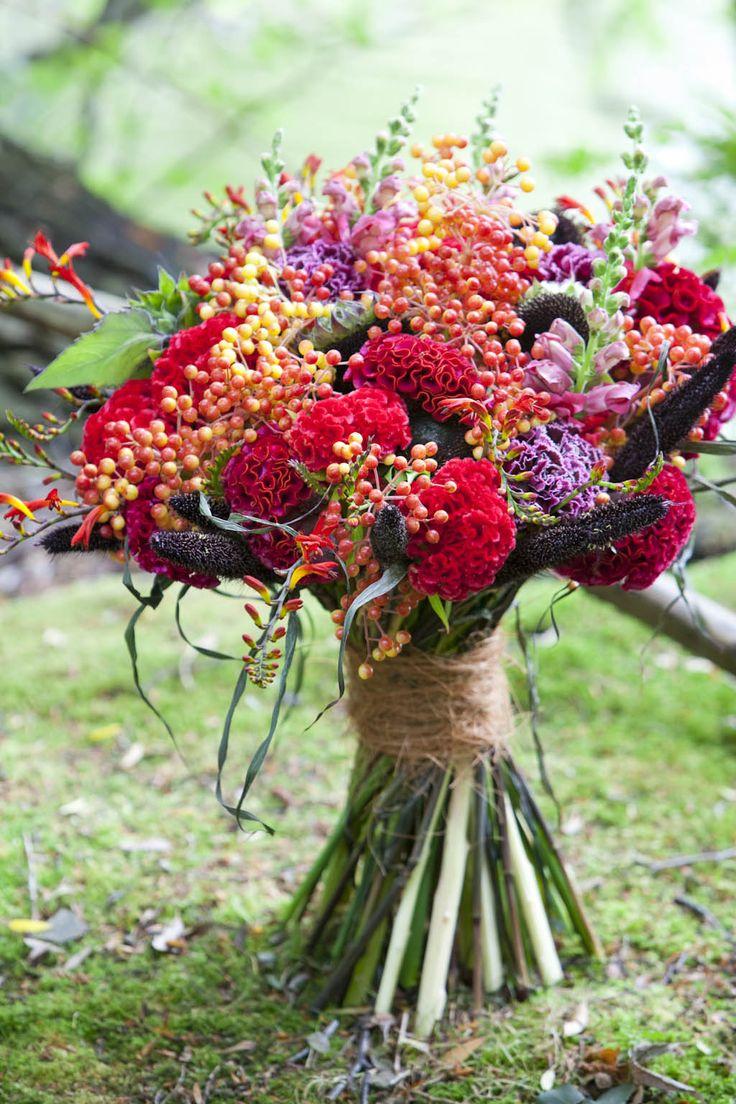 46 best images about Celosia arrangements on Pinterest