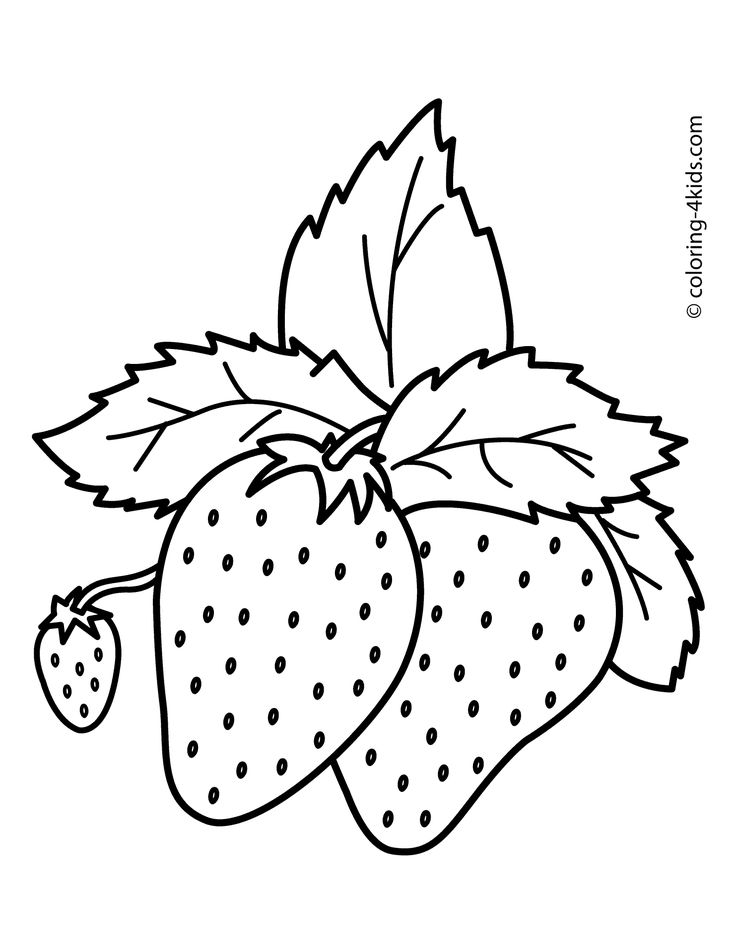 Best 25+ Fruit coloring pages ideas on Pinterest