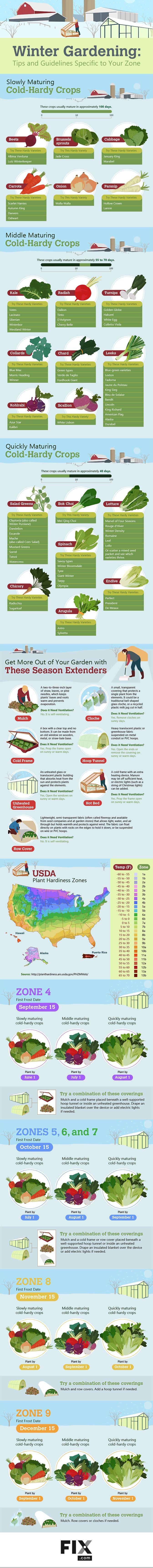 25 Best Ideas About Winter Vegetable Gardening On Pinterest