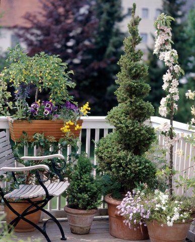 25 Best Ideas About Apartment Patio Gardens On Pinterest