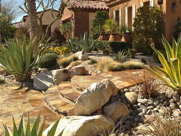1000+ images about Desert Landscaping on Pinterest
