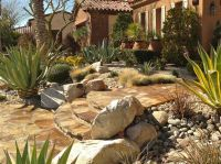 1000+ images about Desert Landscaping on Pinterest ...