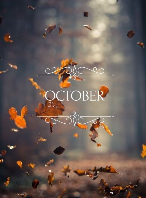 Free Fall Cartoon Wallpaper Best 25 Fall Quotes Ideas On Pinterest Fall Time Quotes