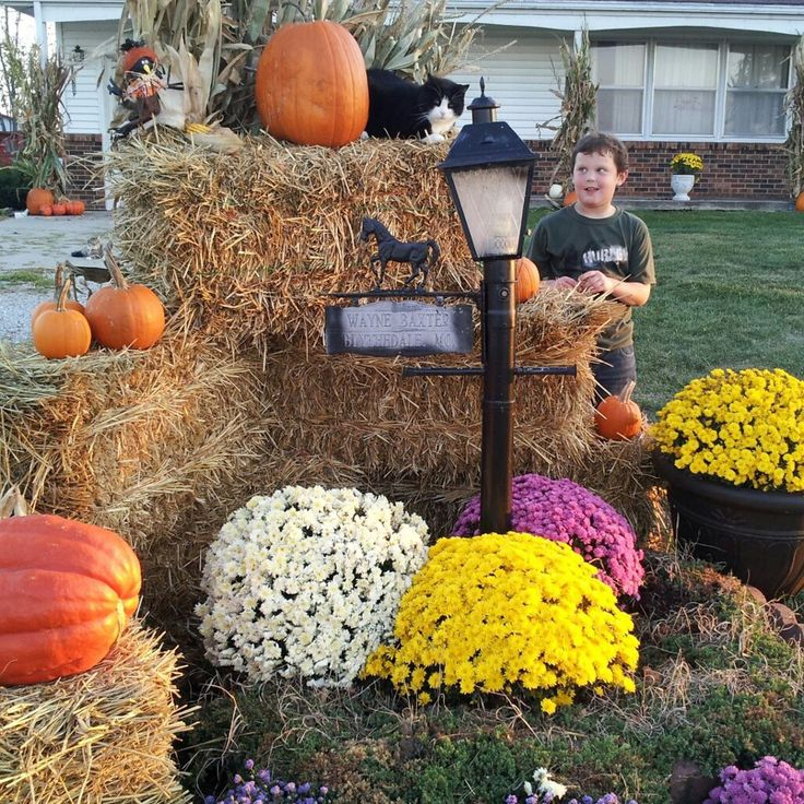 25 Best Ideas About Fall Yard Decor On Pinterest Halloween Yard
