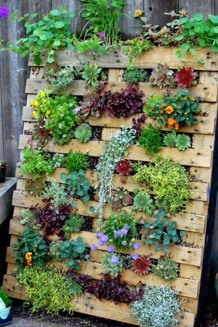 17 Best Ideas About Vertical Gardens On Pinterest Wall Gardens