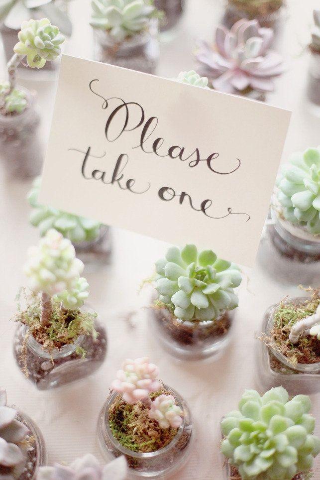 25 Best Ideas About Garden Party Favors On Pinterest Succulent
