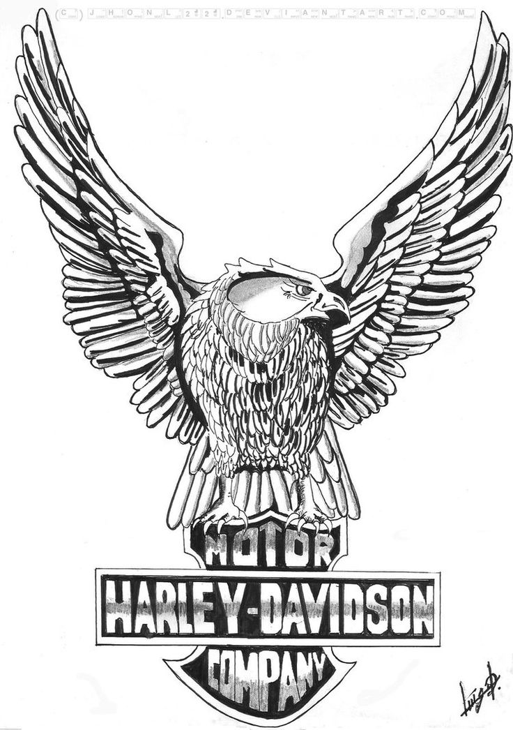 Harley-Davidson Logo Line Drawing I like this
