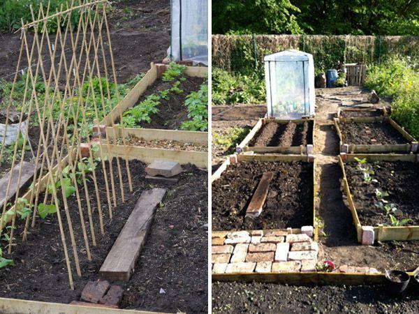 52 Best Images About Allotment On Pinterest Gardens Veg Garden
