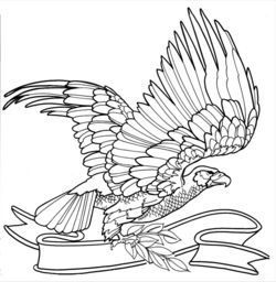 1000+ images about Coloring Pages/ LineArt Birds on