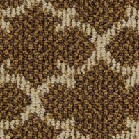1000+ images about Masland Carpet and Rugs on Pinterest ...