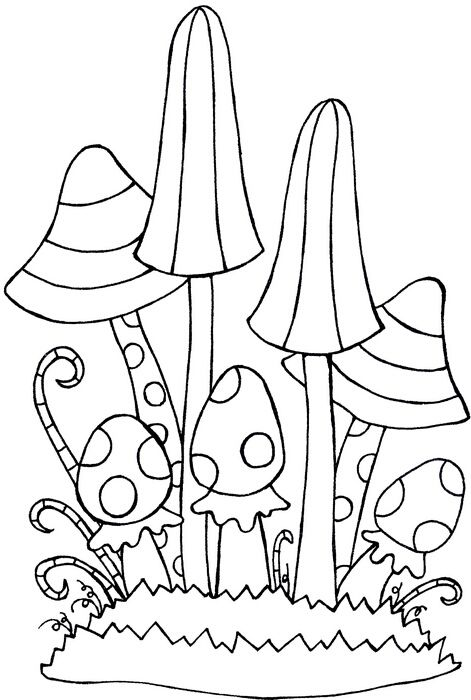 92 best images about Magic Mushrooms on Pinterest