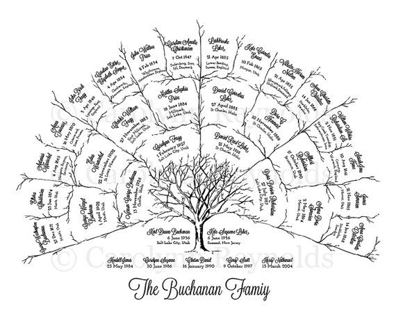 17 Best ideas about Family Tree Chart on Pinterest