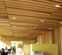 Unique Ceiling Design for Hall Ideas | Hunter douglas ...