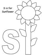 17+ best images about Sunflower Early Learning Ideas on