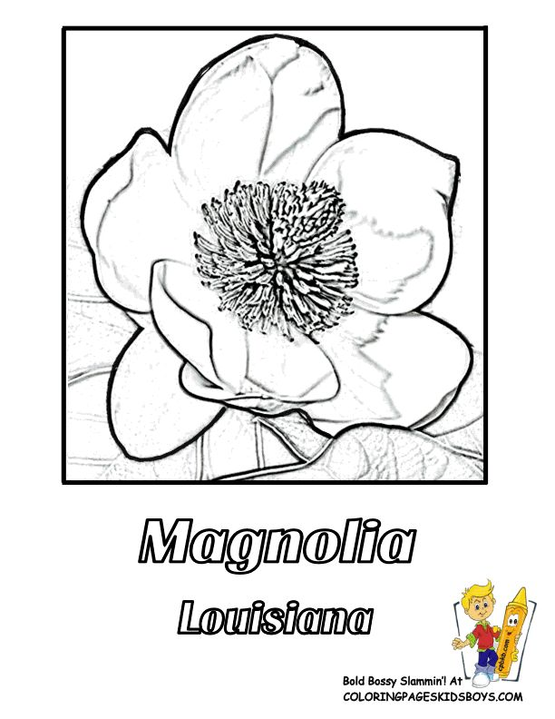 251 best USA Coloring Pages images on Pinterest