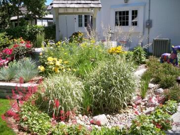 The 72 Best Images About Rain Garden Ideas On Pinterest Gardens
