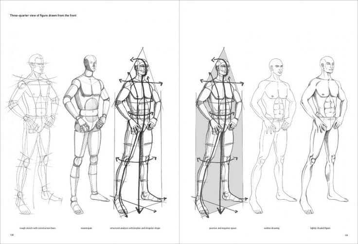 17 Best images about model sheets and figures on Pinterest