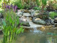 Garden Ponds and Waterfalls | Pond design with stilted ...