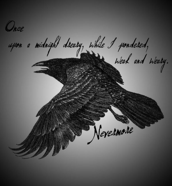 edgar allan poe - nevermore quirky