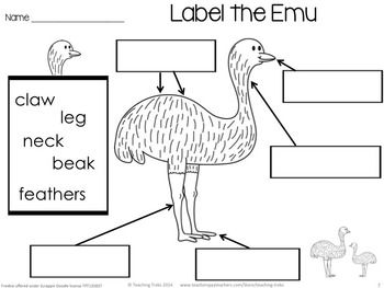 Australia for Kinder Kids FREEBIE contains a Label the Emu