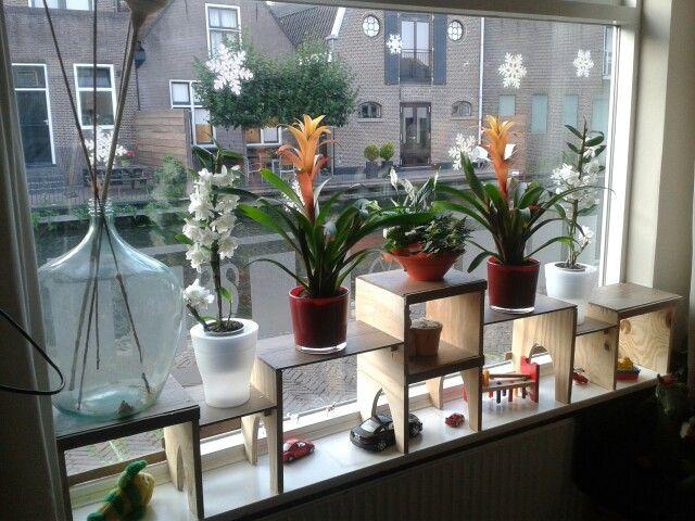 Extra etage op de vensterbank Combi spelen en planten