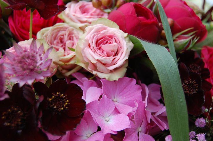 17 Best images about floristik in deutschland on Pinterest