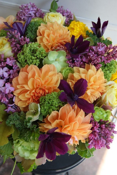 165 best images about Citrus Green  Purple Passion on