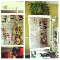 135 best images about Birds PARROT CAGES & CARRIERS on ...