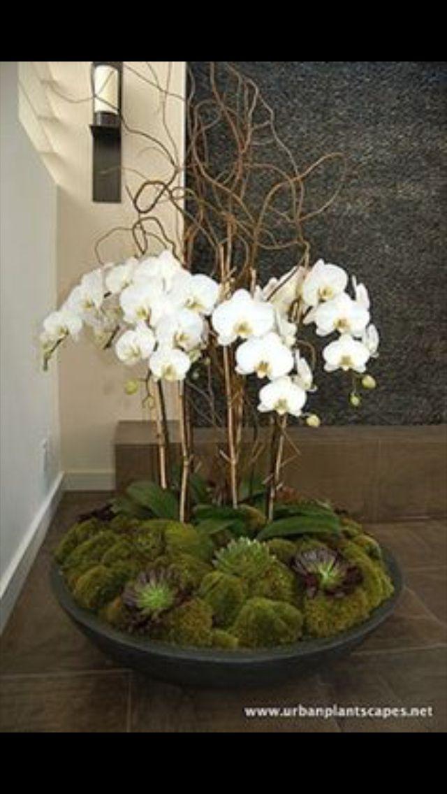 Best 25 Orchid Centerpieces Ideas On Pinterest