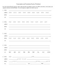 Transcription and translation practice worksheet-1 ...