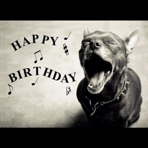 ♫Happy Birthday ♪♫To You♬ ♫Happy Birthday To You ♫Happy