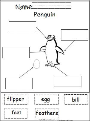 Cut and paste, Penguins and Activities on Pinterest
