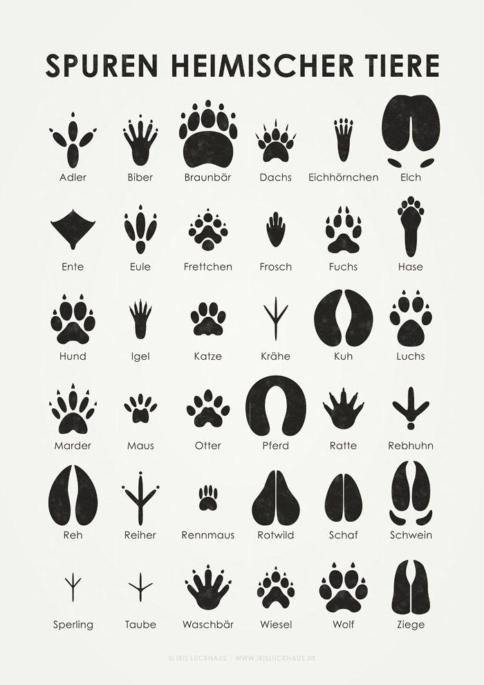 17 Best ideas about Kindergarten Posters on Pinterest