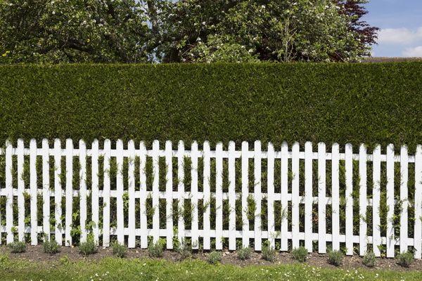 Garden Boundary Ideas Google Search Garden Rooms Pinterest