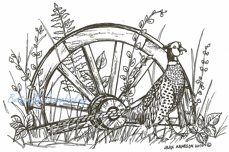 Wagon Wheel Coloring Page Coloring Pages