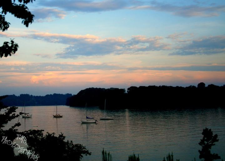 Fort Loudon Lake Yacht Club Knoxville TN Deal Chicken Knoxville Pinterest Yacht Club