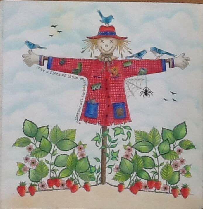 17 Best Images About Scarecrow Secret Garden Espantalho