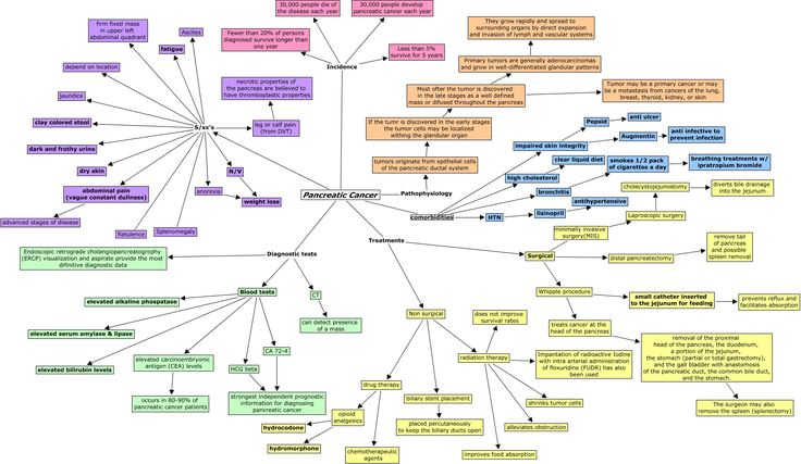 carotid artery diagram braun millenium 2 wheelchair lift wiring pancreatic cancer - concept map | nursing & medicine pinterest maps