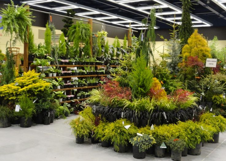 27 Best Images About Pottery & Garden Center Displays On Pinterest
