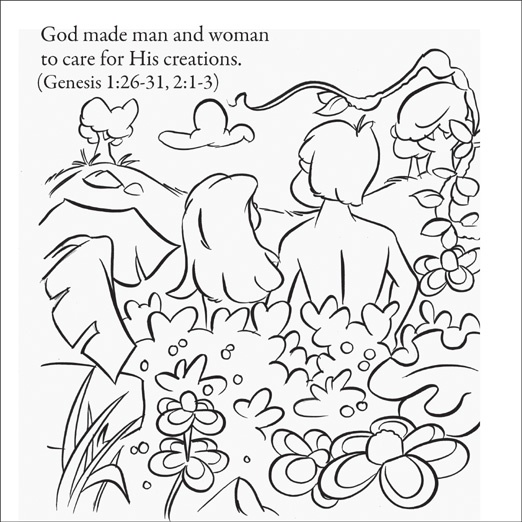 The Creation Story In Genesis