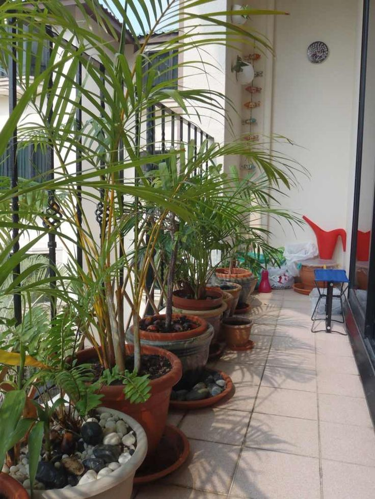 sichtschutz balkon himmelbett holz konstruktion sichtschutz fur, Gartengerate ideen