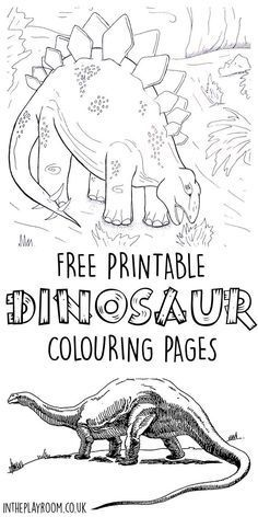 17 Best images about DINOSAUR THEME on Pinterest