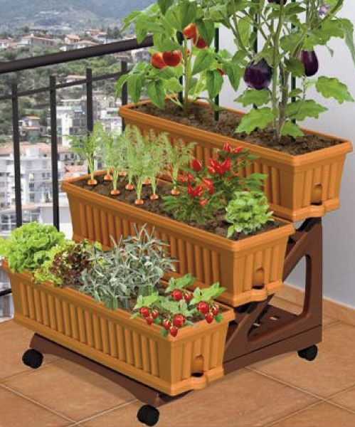 25 Best Ideas About Apartment Vegetable Garden On Pinterest