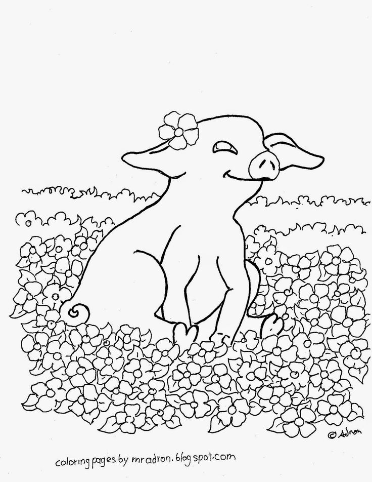 200+ best images about Pig Coloring Pages on Pinterest