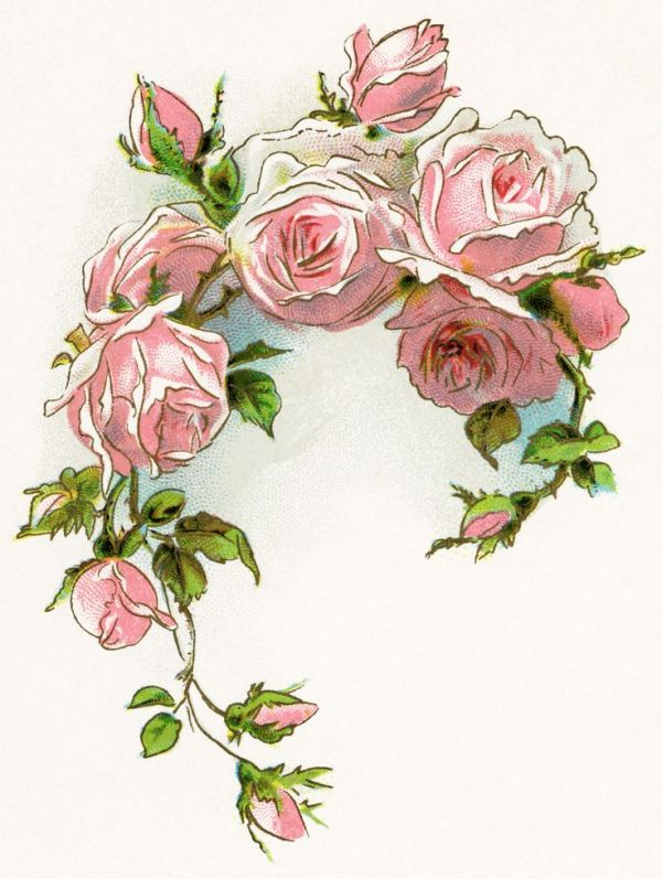 victorian rose free vintage