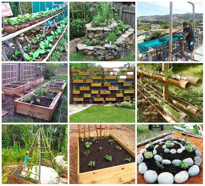 56 Best Images About Small Garden Ideas Veg On Pinterest Gardens